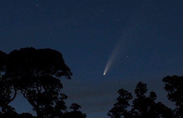 Comet Neowise Richard Darn