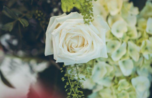 The Grand White Flower